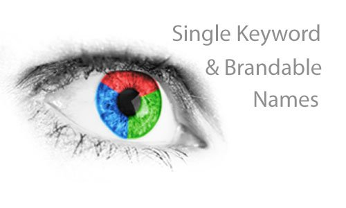 single keyword domains