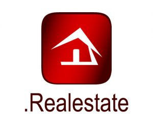 Choosing a Good Real Estate Domain Name